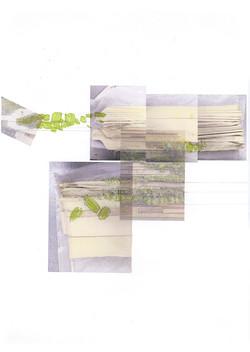 YINGYING-PRE-portfolio_10