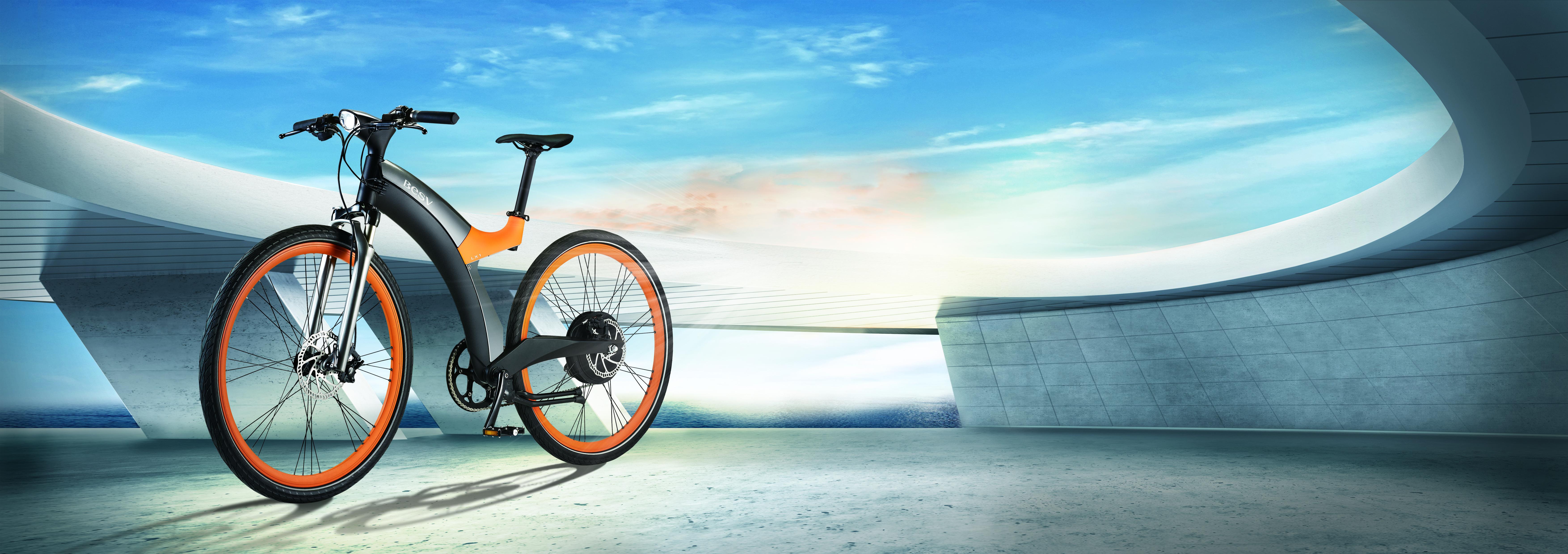 LX1 E Bike