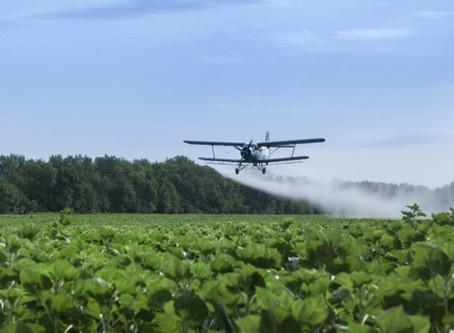 France 2 et l'agriculture du Mato Grosso.