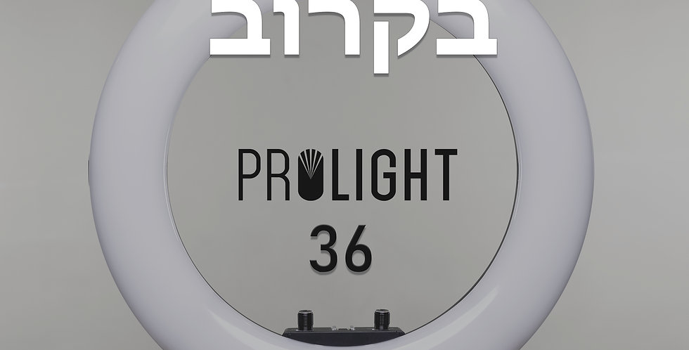 ערכת פרולייט 36