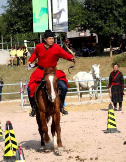 In Horse Archery Competition