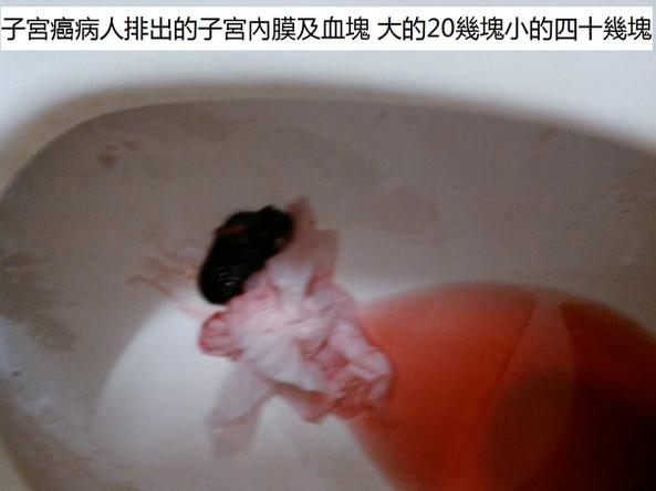 吴泓徳33-caption.jpg