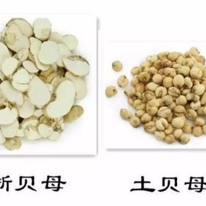 王三虎自擬抗癌方簡介(1)