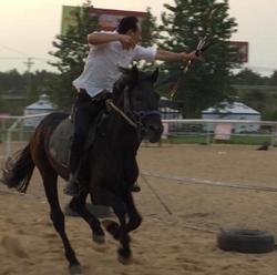 Horse Archery Practice