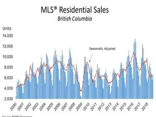 BC房地产协会预测:复苏只需6个月