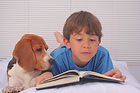 Dog with boy reading