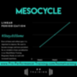 Mesocycle_Hometraining.png