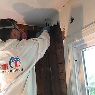 restoration 1 home expert