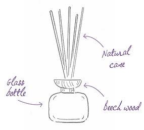 bouquet parfume dessin gb.jpg