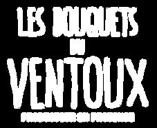BV_Logo_B.png