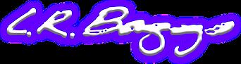 baggs logo.png