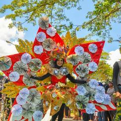 karnaval rfc 2018.png