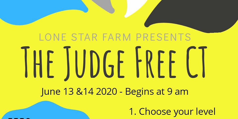 The Judge-Free CT