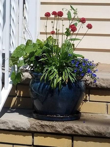 Container Garden J. Mitchell Gardens & Stone