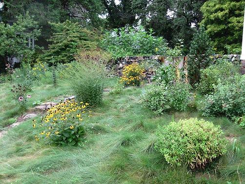 Suburban Meadow Garden J. Mitchell Gardens & Stone
