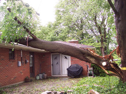 Storm and Emergency Cleanup