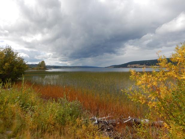Richard Evens Horse Lake Fall-Colours-20