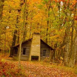 Fall Cabin, Ryerson Conservation Area, Riverwoods, IL