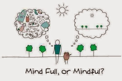 mind ful or mindful.jpg