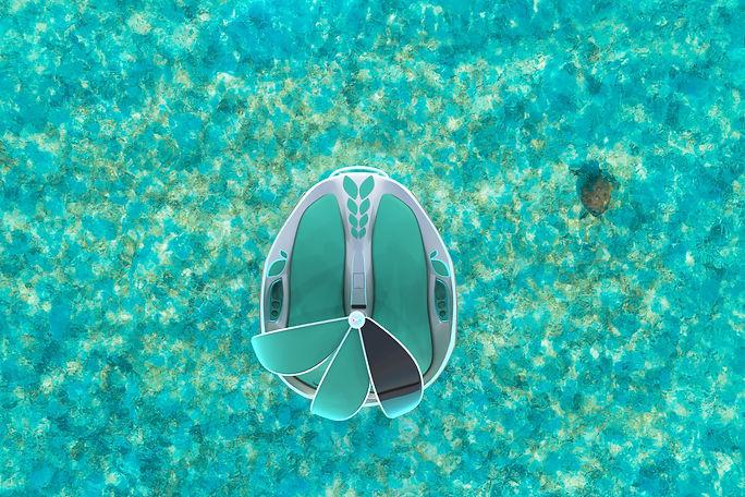 2chilli island.268.jpg