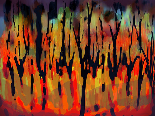 Lámina Incendio