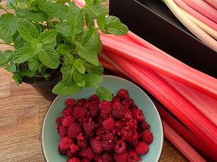 frischer Rhabarber mit Himbeeren und Minze, gute Zutaten für einen Fruchtaufstrich mit wenig Zucker.