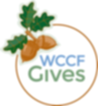 WCCF Gives.png