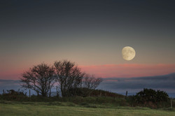 Moonrise at Crows Nest