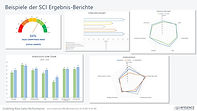 Beispiele SCI Berichte.jpg
