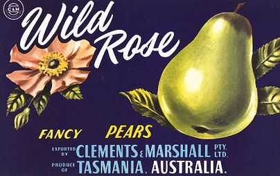 Tasmanian-pear-labels-wild-rose.jpg