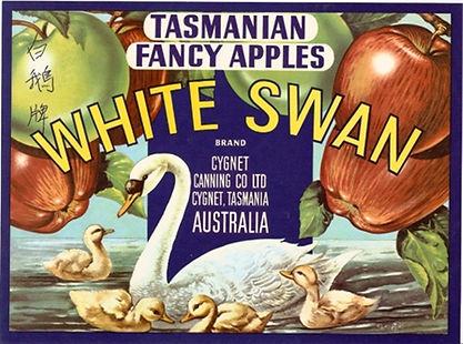Tasmanian-apple-label-white-swan