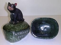 Tasmanian_Devil_on_rock_dish.jpg