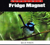 magnet-blue_wren-lg.jpg