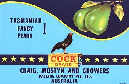 Tasmanian-pear-labels-pear-cock-I