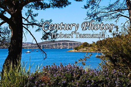 Tasman_Bridge_Hobart_Tasmania_Digital_ph
