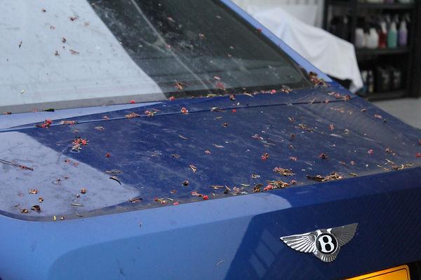 Bentley Mulsanne - Before 7.JPG