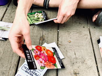 Sort Your Seeds: What do I plant and when?