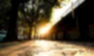 marco-wichert-fotografie-berlin-sbahn-so