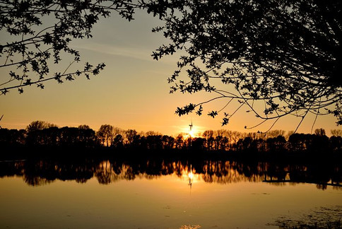 marco-wichert-fotografie-berlin-natur-so