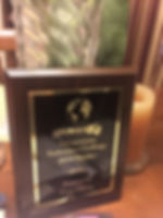 7 continents 2019 award front view.JPG