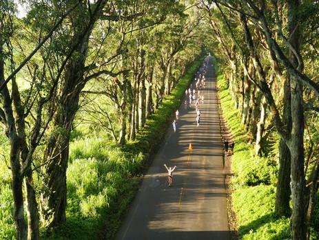 Kauai Marathon, Half Marathon Discount - Hawaii