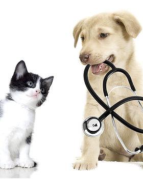 health-exam.jpg