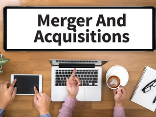 Major website mergers and acquisitions advisory and brokerage services in Japan
