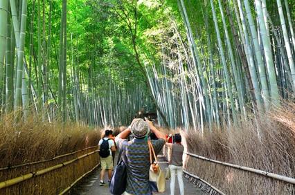 伸びる外国人向けビジネス!? More job opportunities for foreigners in Japan!?