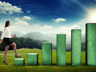 Which IT businesses continuously steady profit? Ranking of companies with many continuous years of p
