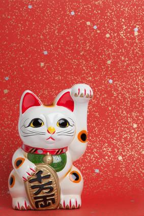 両手をあげた、招き猫!? Left paw or right? The lucky cat raising both paws.