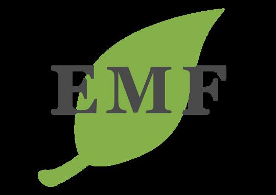 Emerson Montessori Foundation