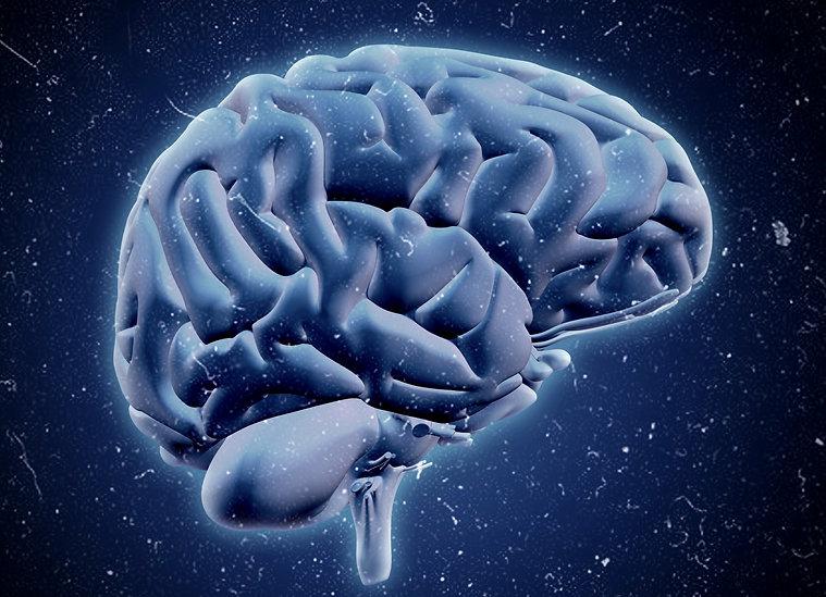Brain%252520Blue_edited_edited_edited_ed