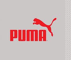 Puma cover.png