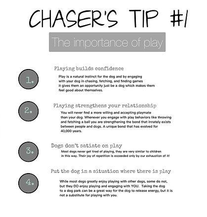 tips 1 white.jpg